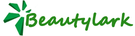 Shanghai Beautylark Industrial Co., Ltd